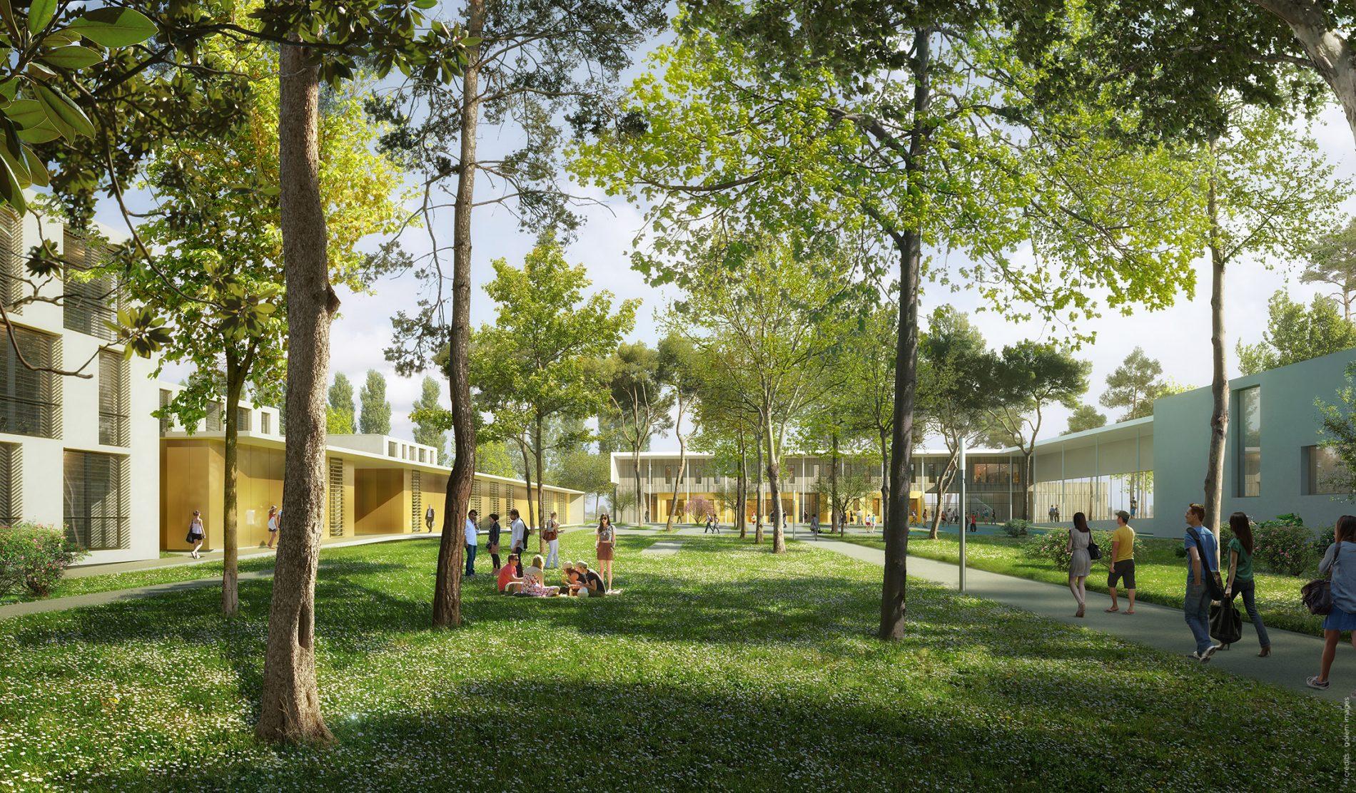 Image du concours d'architecture du Lycée de Castelnaudary, ilôt intérieur arboré